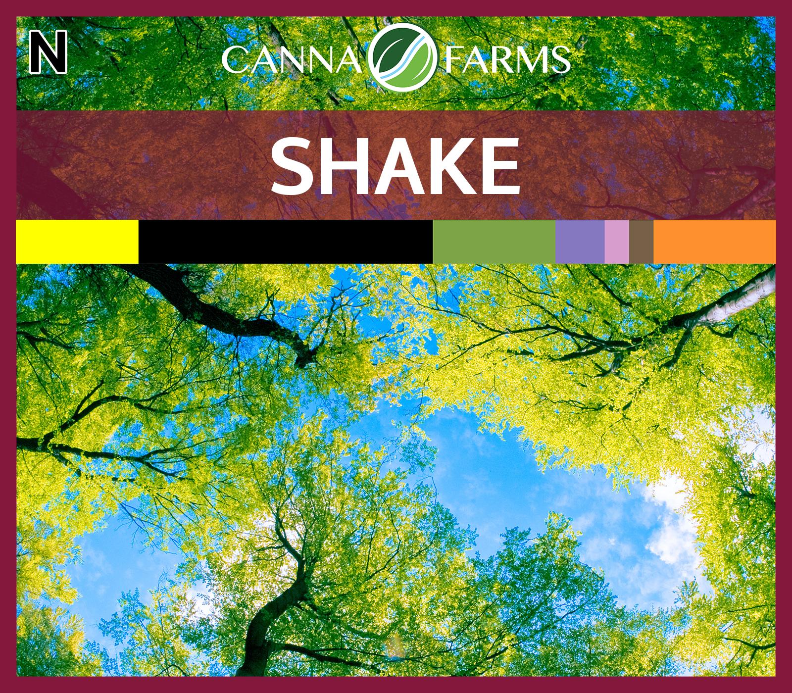 Shake_Blank.png