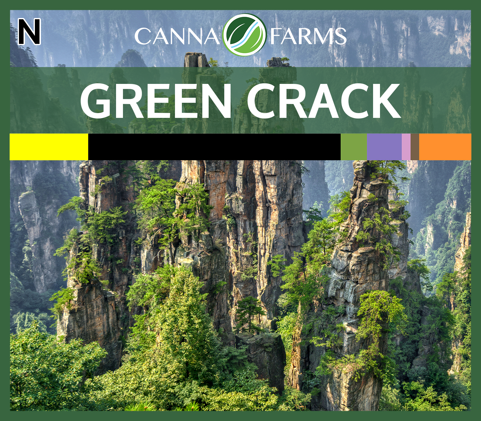 Green_Crack_Blank.png