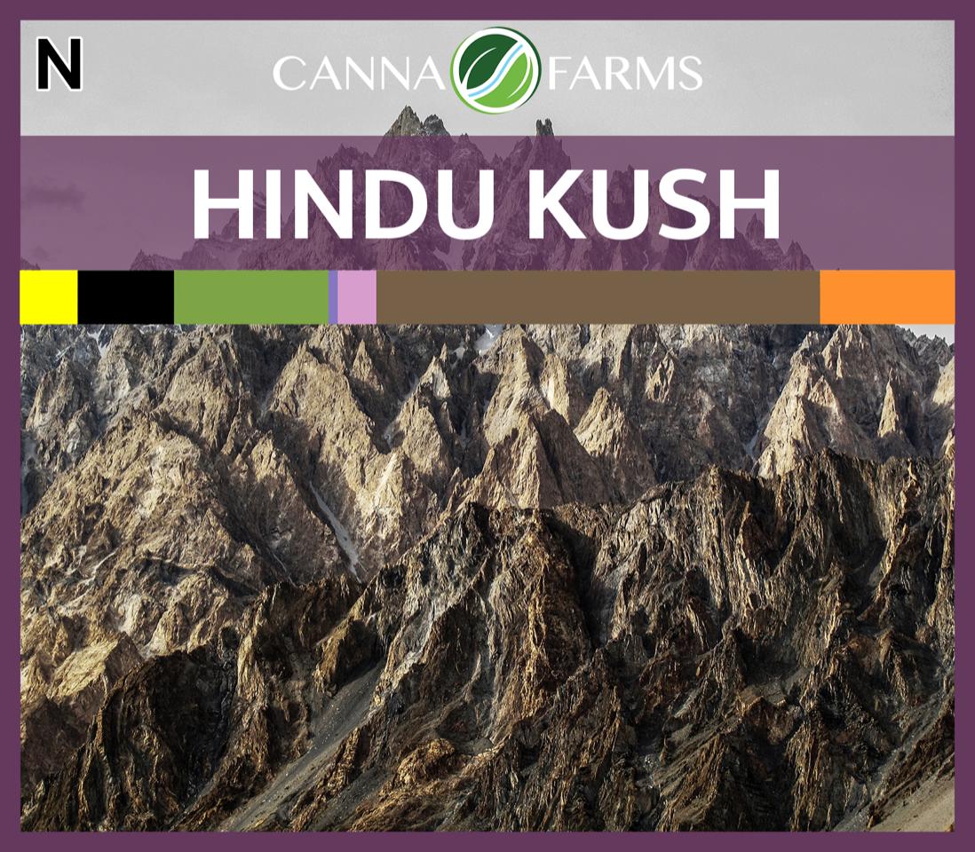 New lot of Hindu Kush  (15.2% THC) $7.50/gram