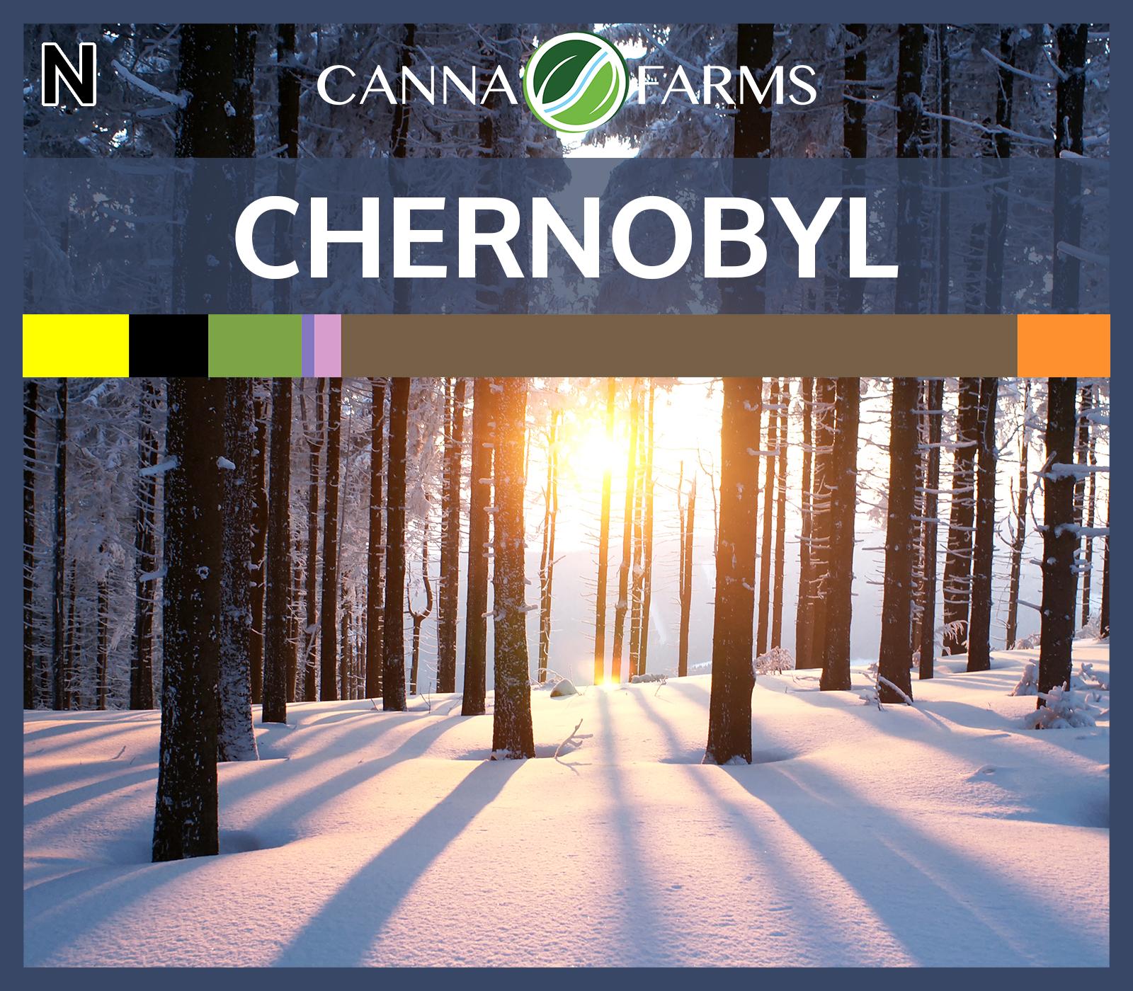 Chernobyl_Blank.png