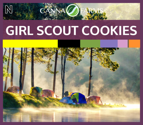 Girl Scout Cookies.png