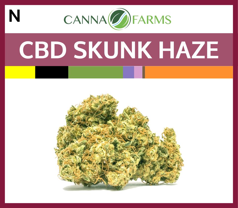 CF-CBD-SKUNK-HAZE.jpg
