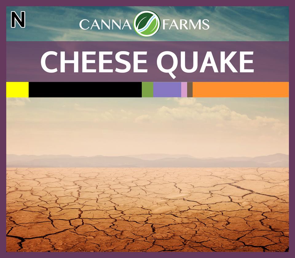 CF-CHEESE-QUAKE.jpg