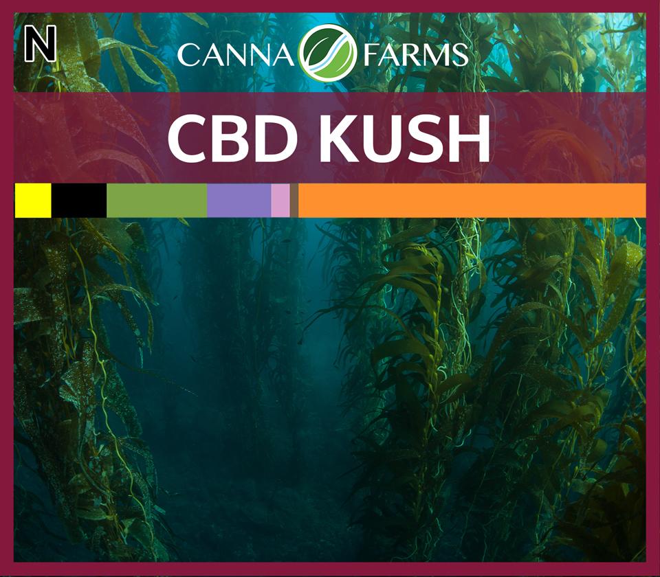 CF-CBD-KUSH.jpg
