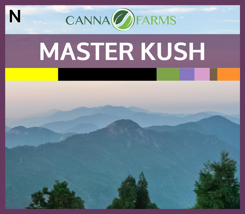 CF-MASTER-KUSH.jpg