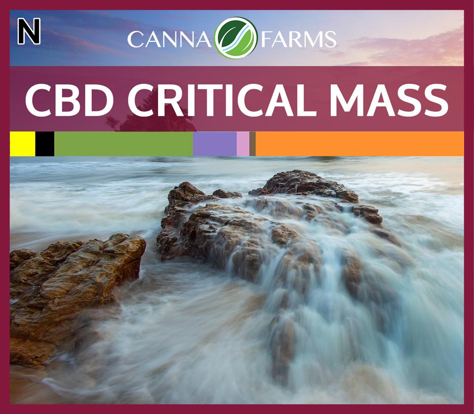 CF-CBD-CRITICAL-MASS.jpg