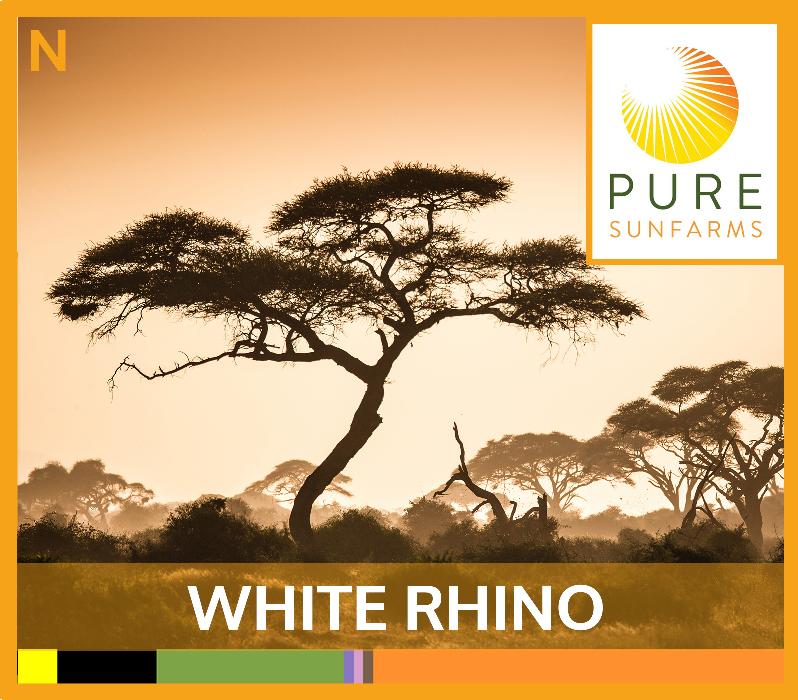 Sunfarms-WHITE-RHINO-TILE.jpg