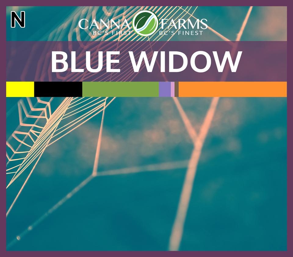 CF-BLUE-WIDOW.jpg
