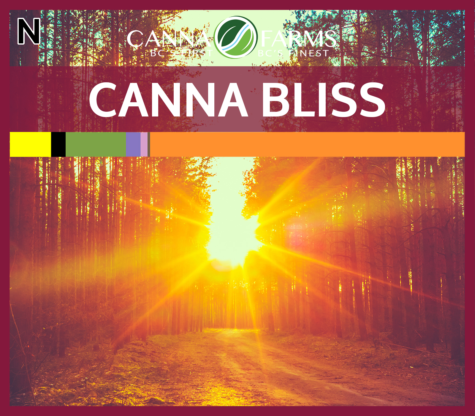 CF-CANNA BLISS.jpg