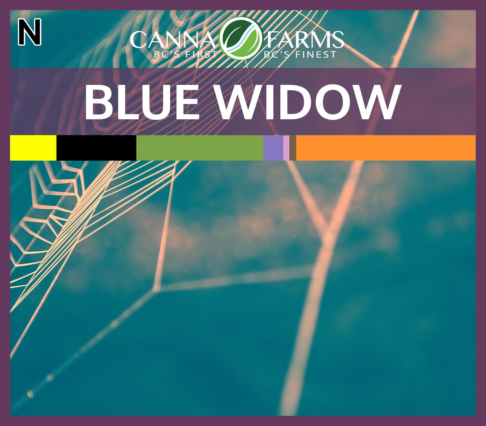 CF-BLUE WIDOW.jpg