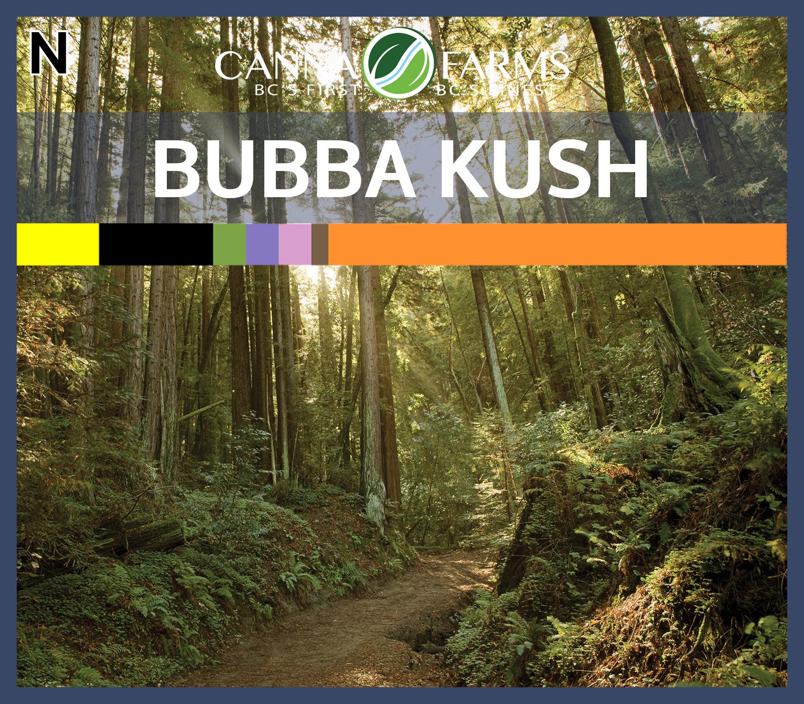 CF-BUBBA KUSH.jpg