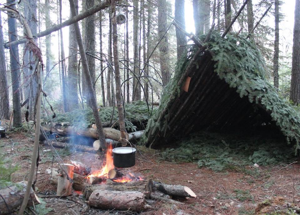 natural shelter.jpg
