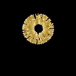 2logo-stacked-gold-maya-chia-258x258.png