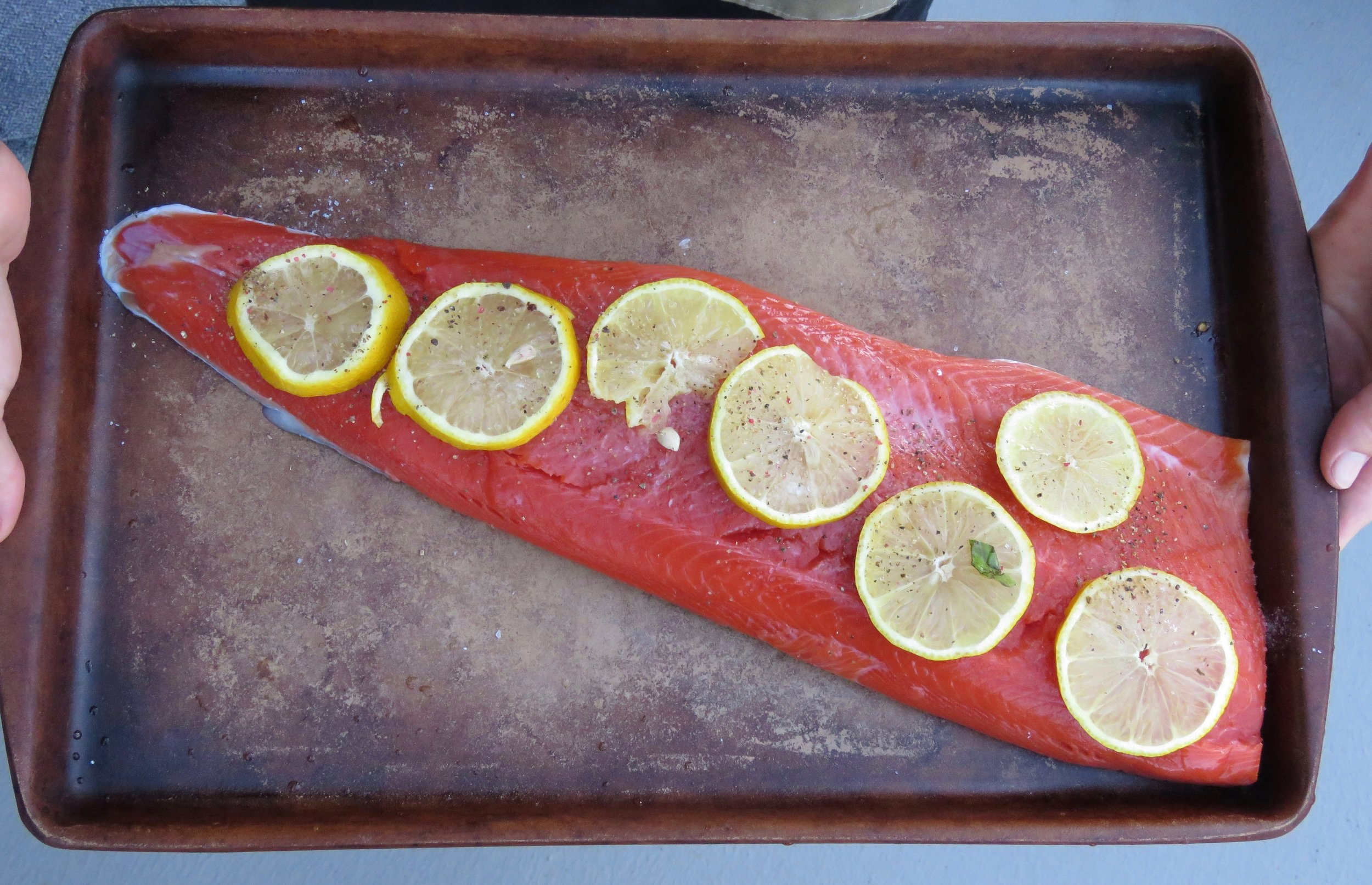Salmon all ready to roast! We go for wild pacific whenever possible.