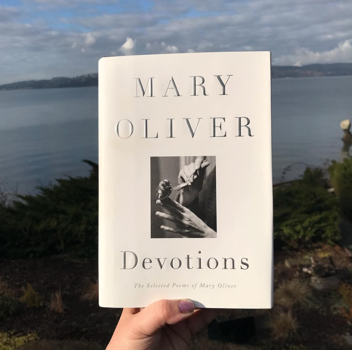 mary oliver devotion