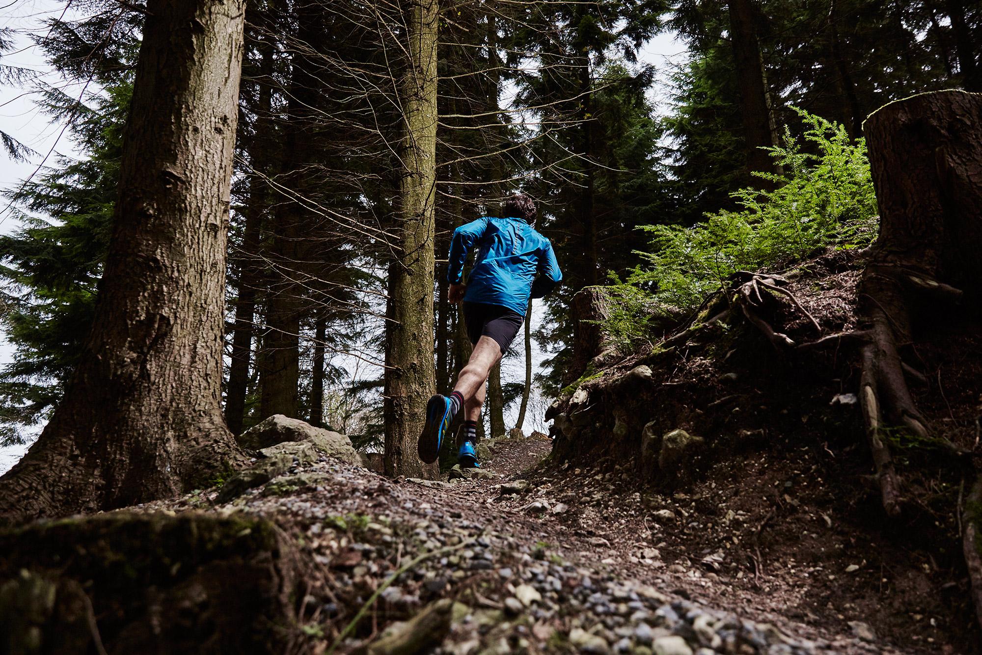 Haldon-trail-142.jpg