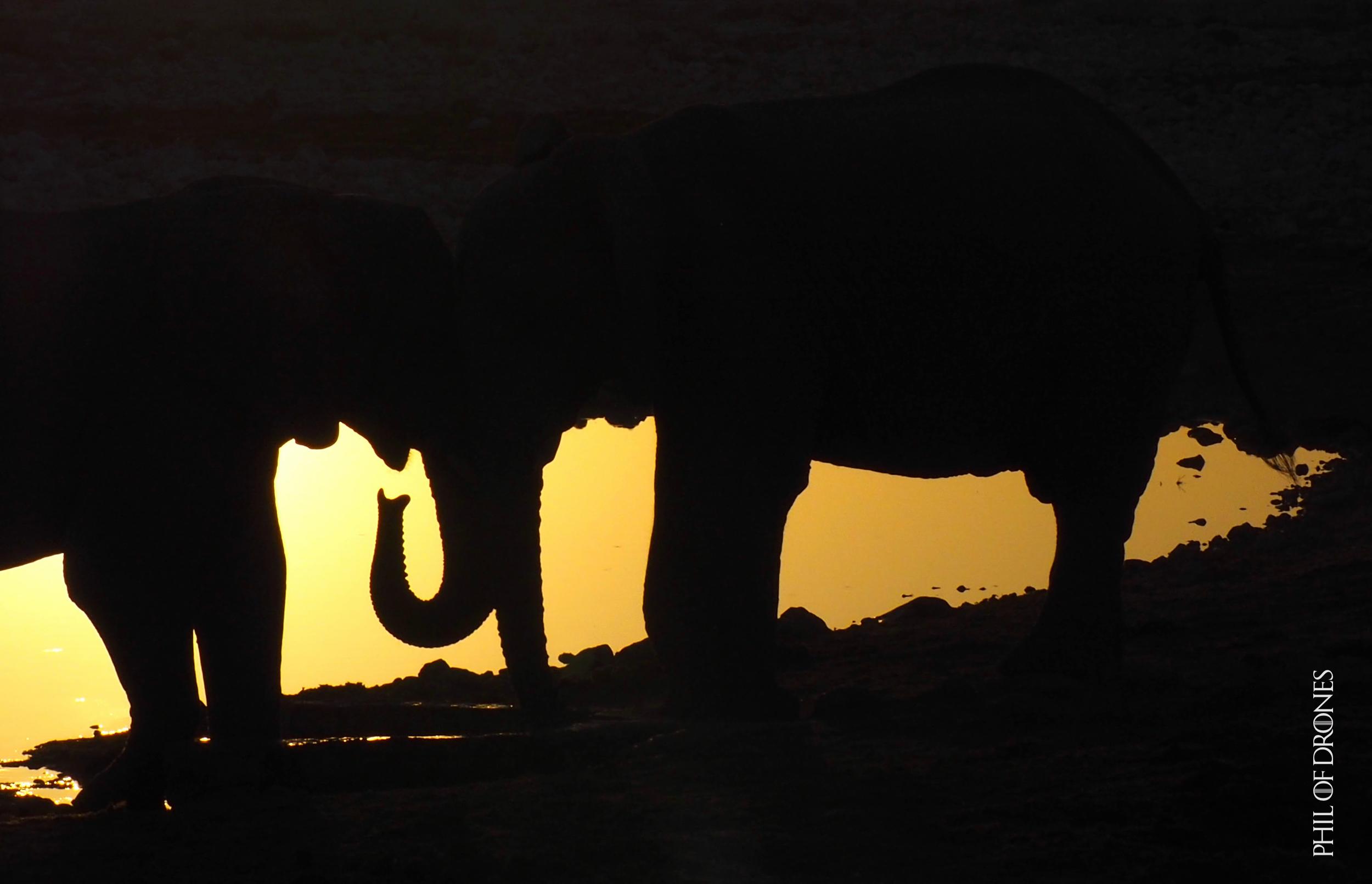 Namibie 84.jpg
