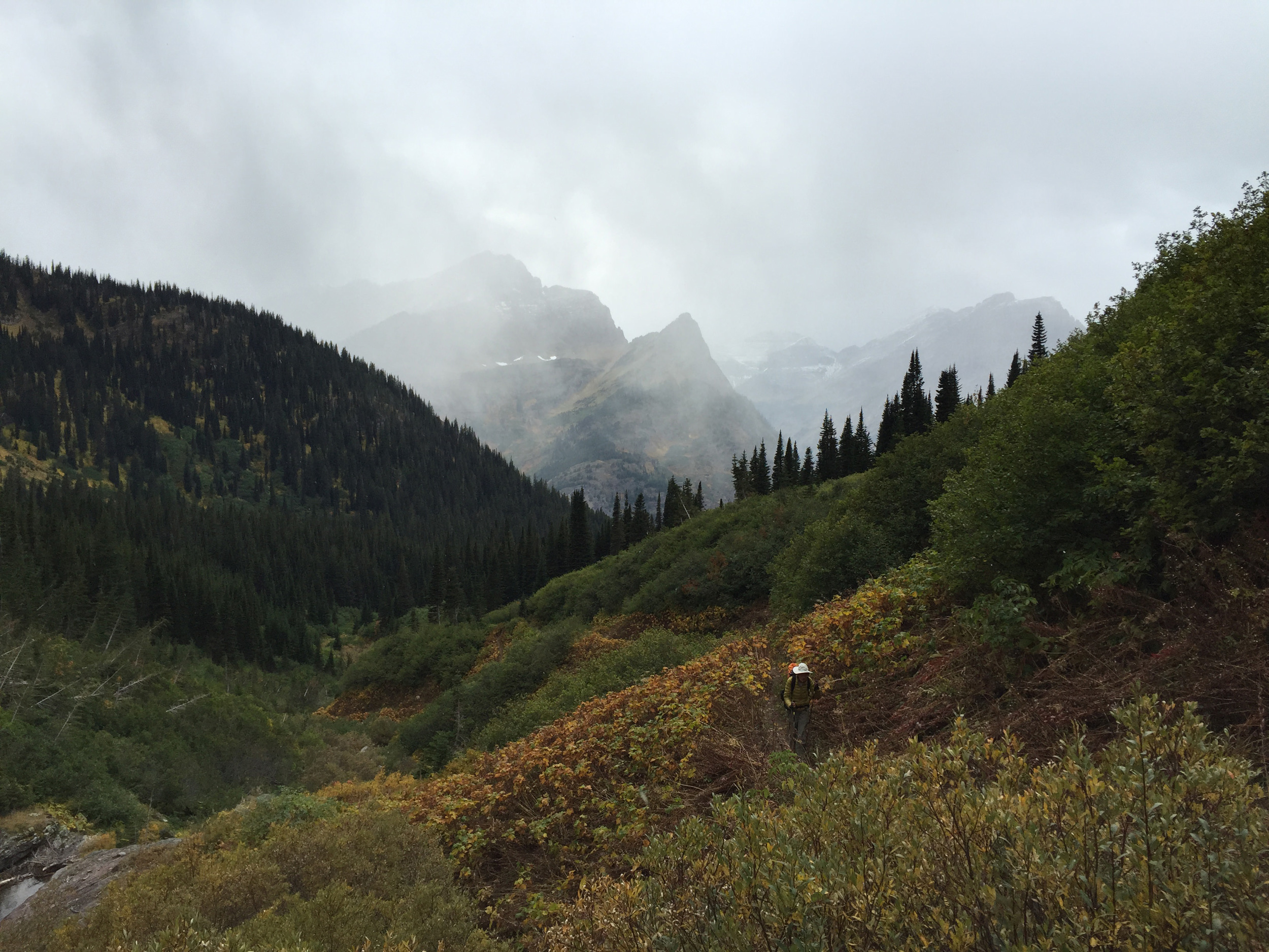 glacier_national_park_many_glacier_loop_1538.jpg