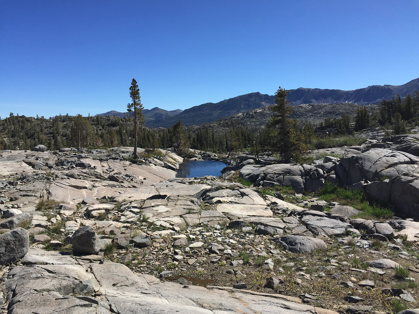 pacific_crest_trail_section_i_2015_9369.jpg