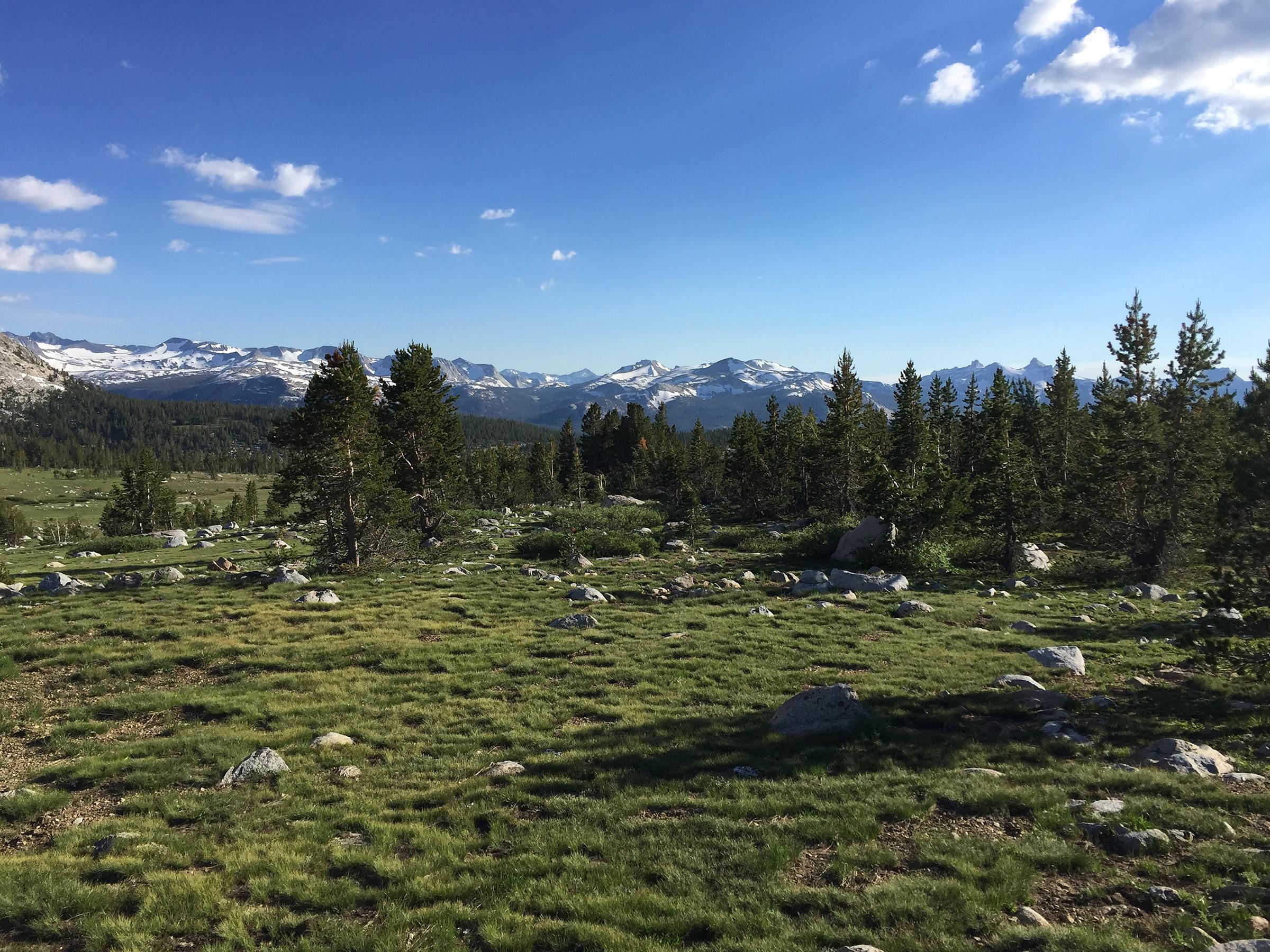 trailname-backstroke-sierra-high-route-2017_9992.jpg