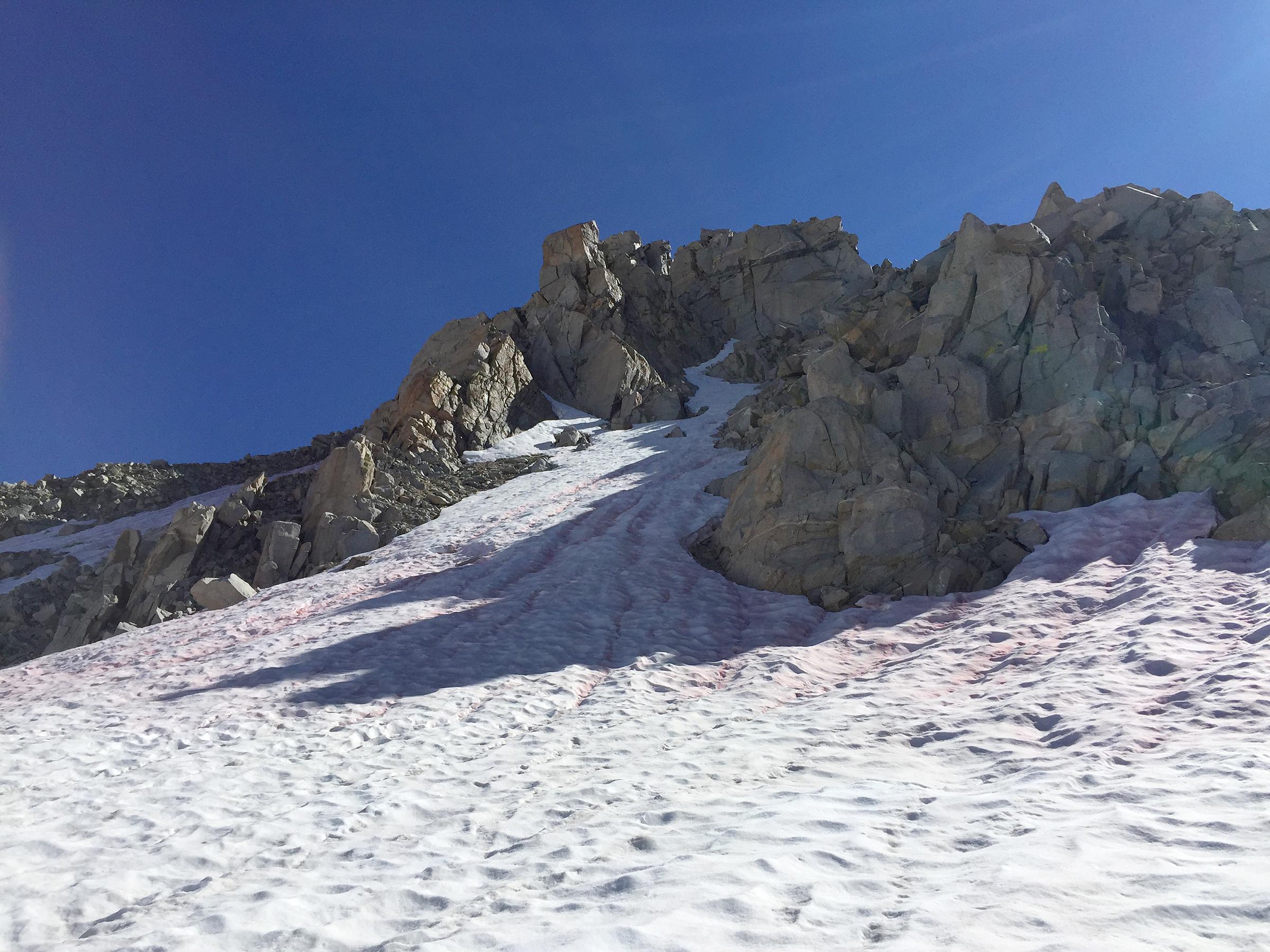 trailname-backstroke-sierra-high-route-2017_0600.jpg