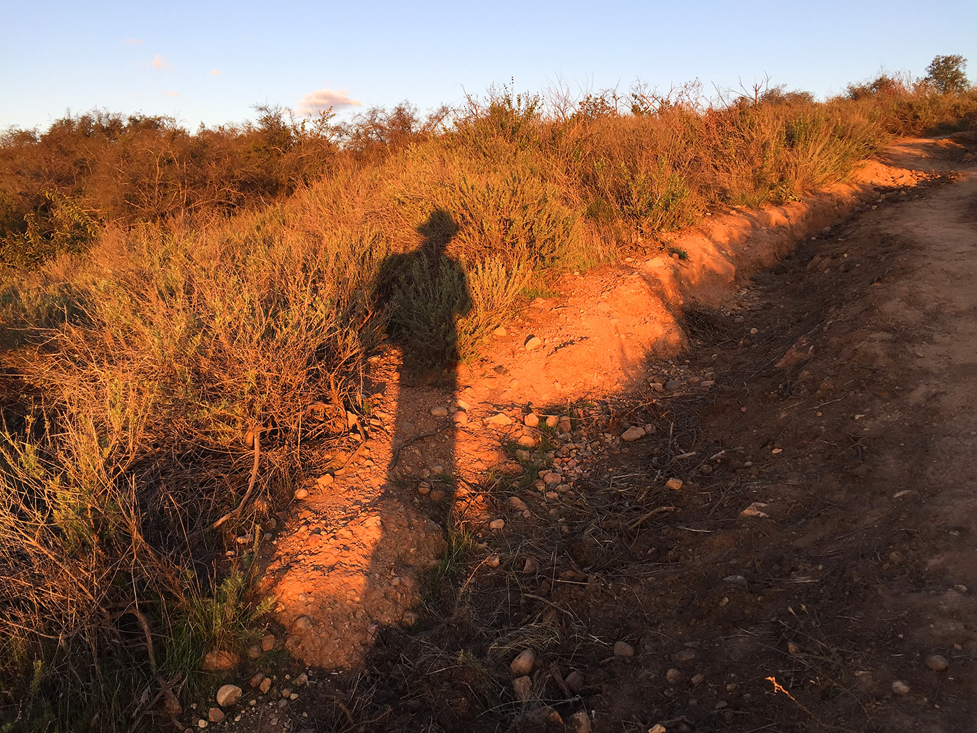 backbone-trail-trailnamebackstroke-3516.jpg