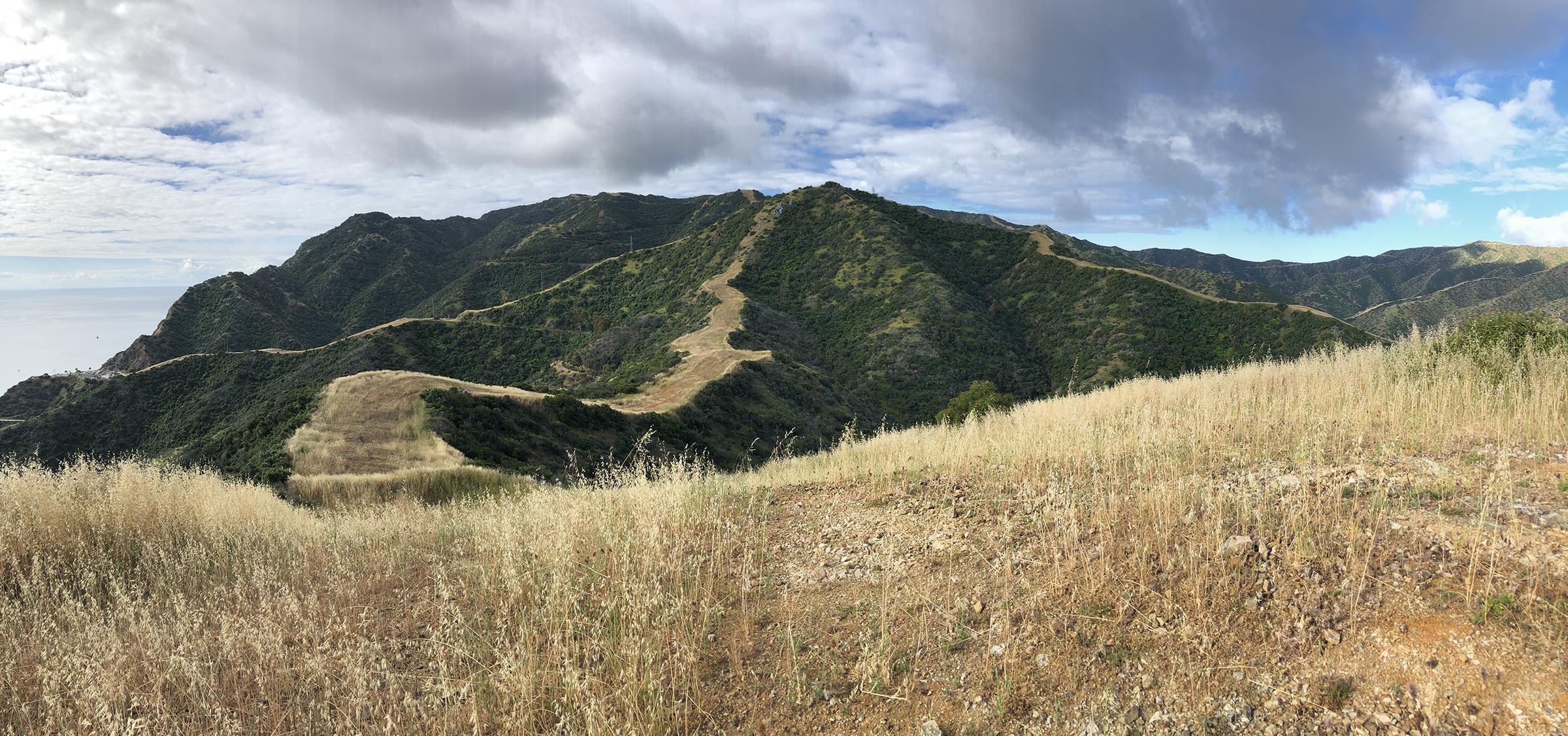 Trans-Catalina Trail-0747.jpg