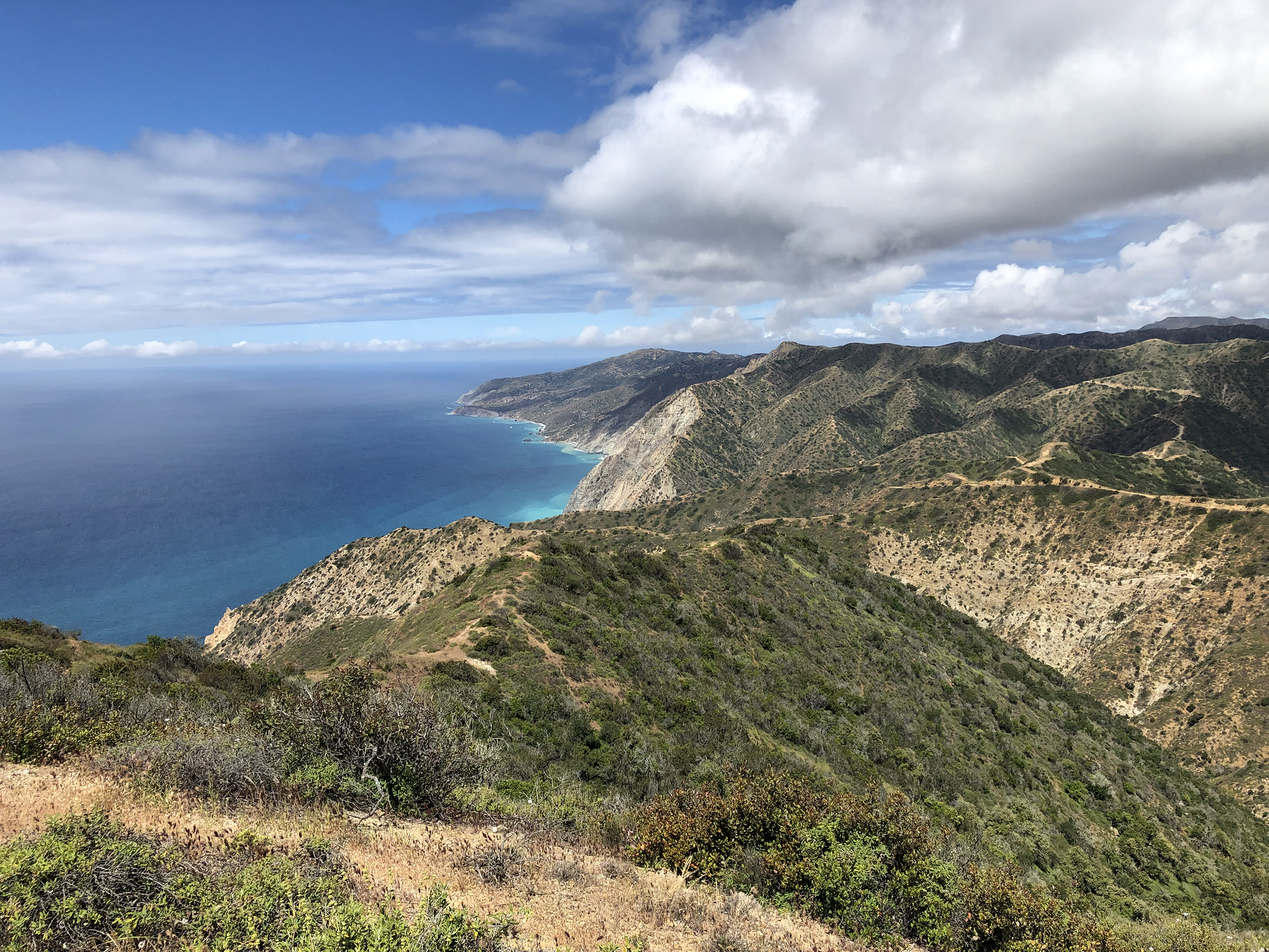 Trans-Catalina Trail-0755.jpg