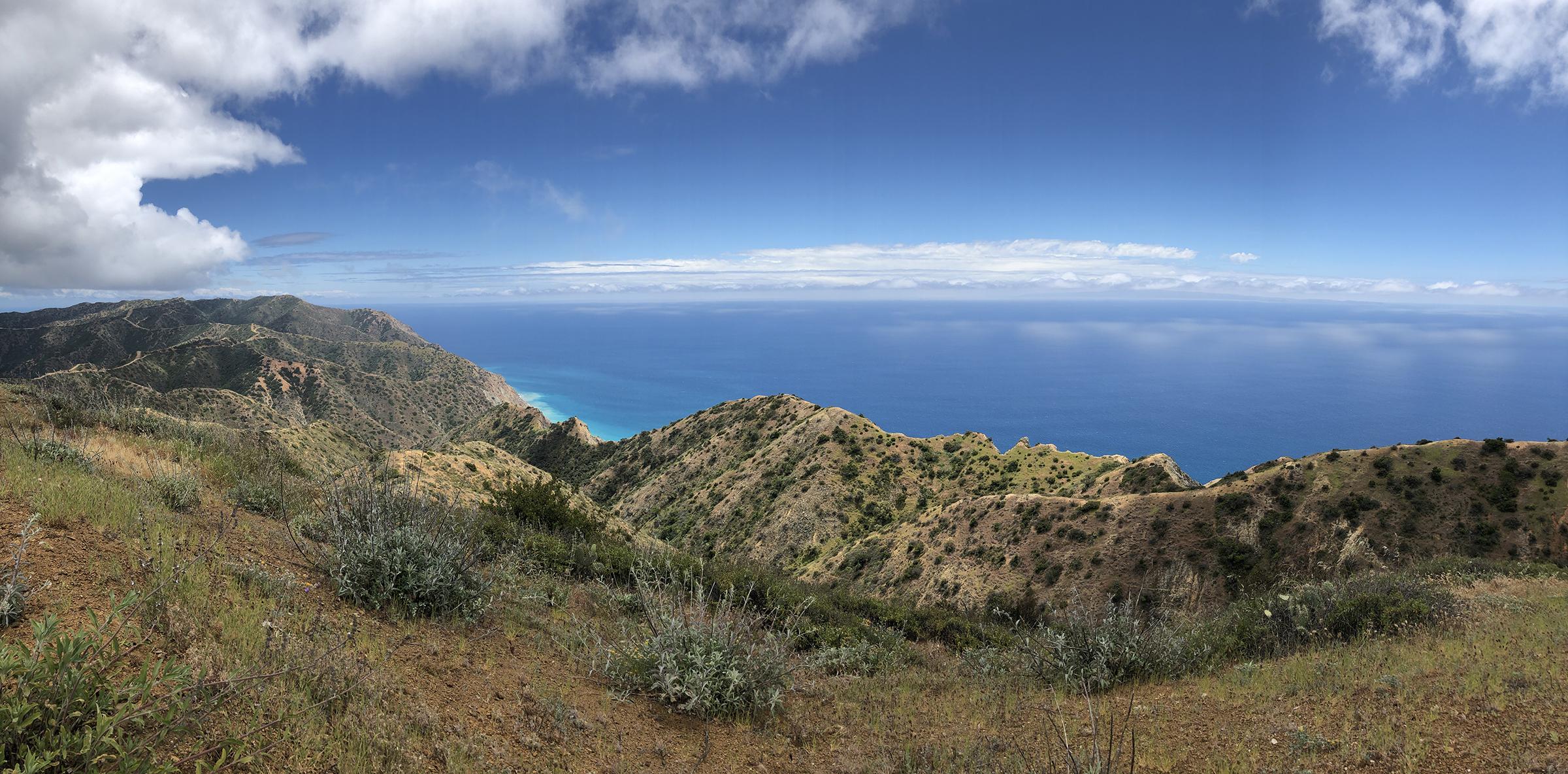 Trans-Catalina Trail-0770.jpg