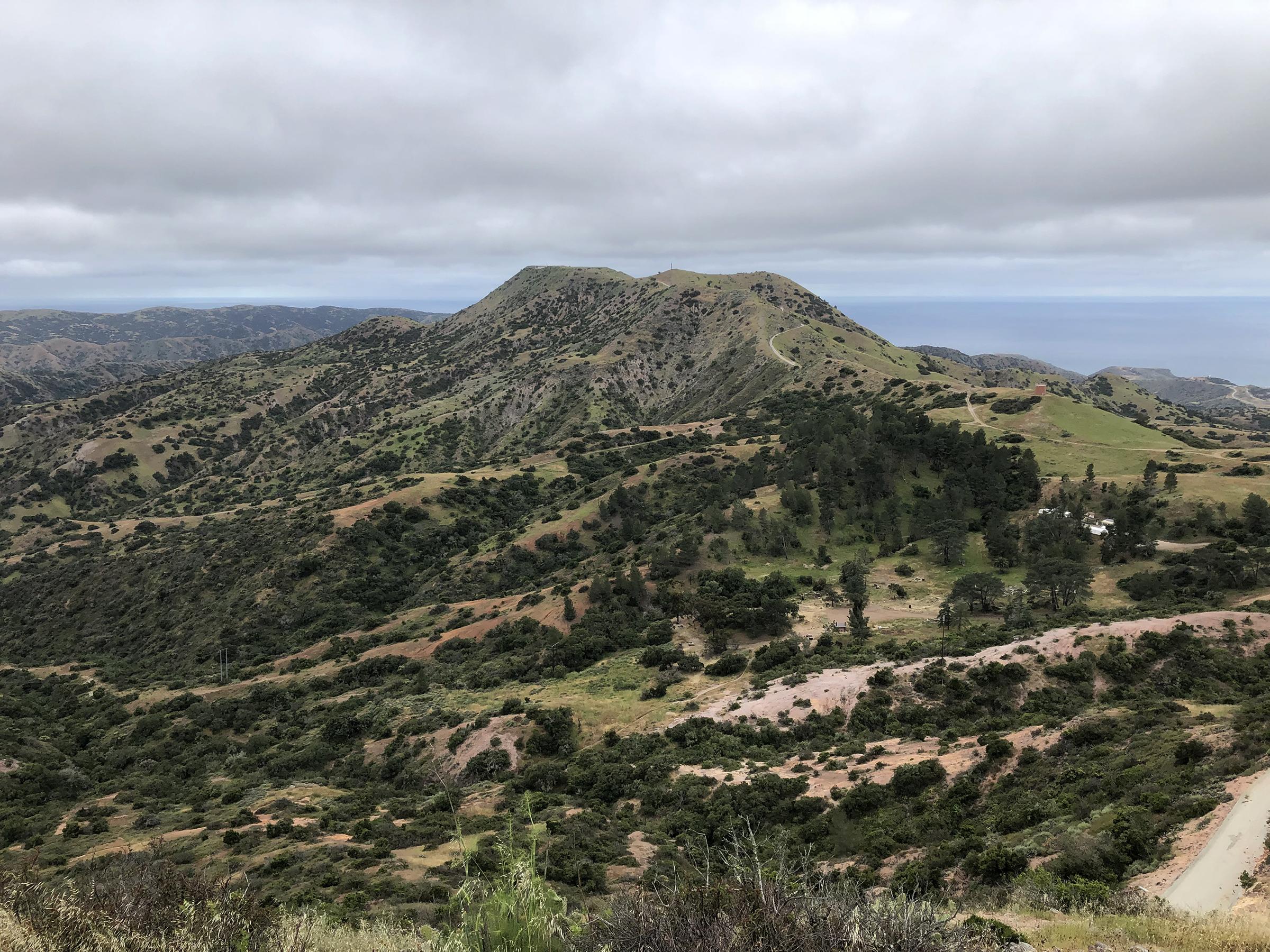Trans-Catalina Trail-0801.jpg