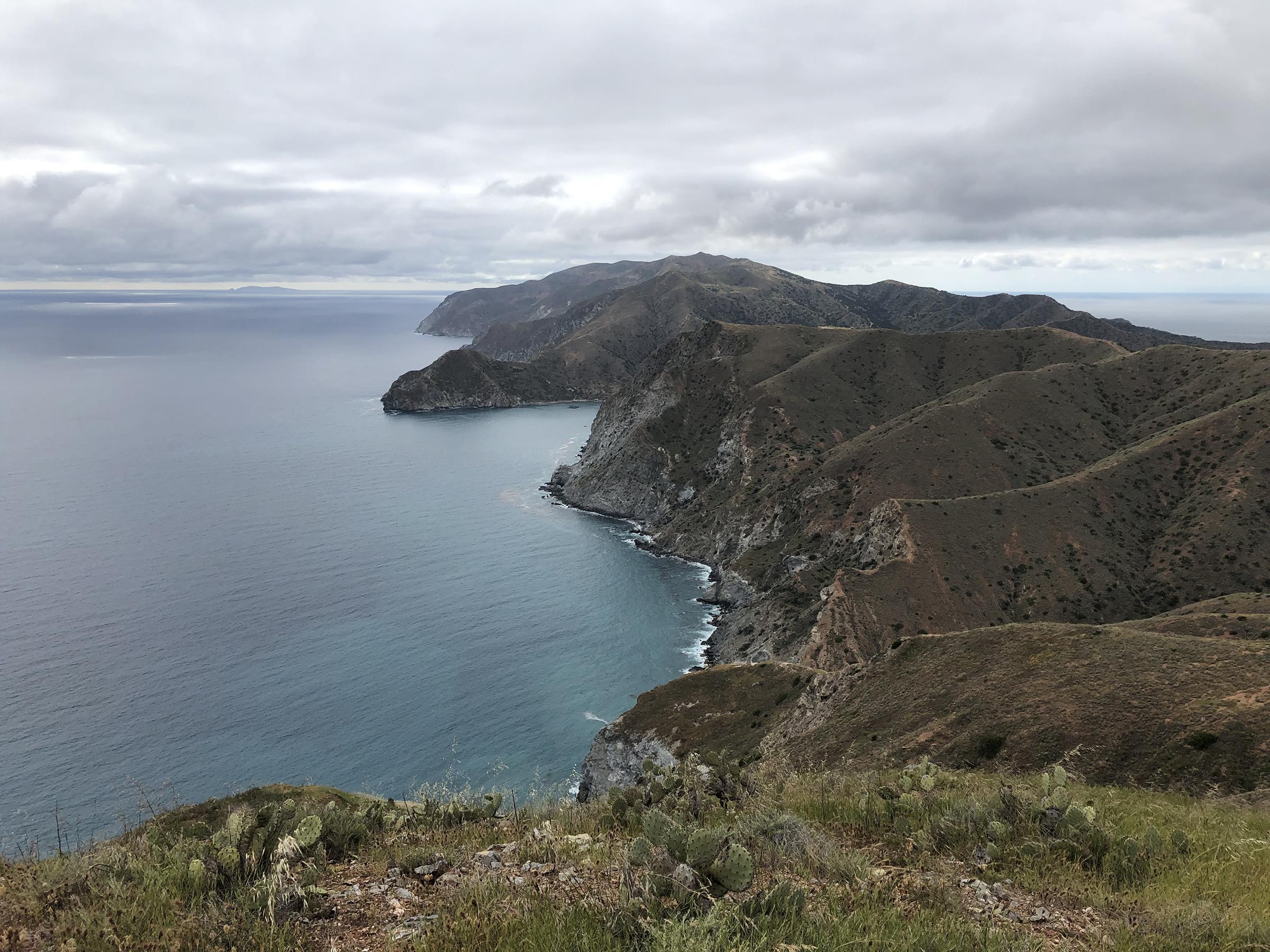 Trans-Catalina Trail-0825.jpg