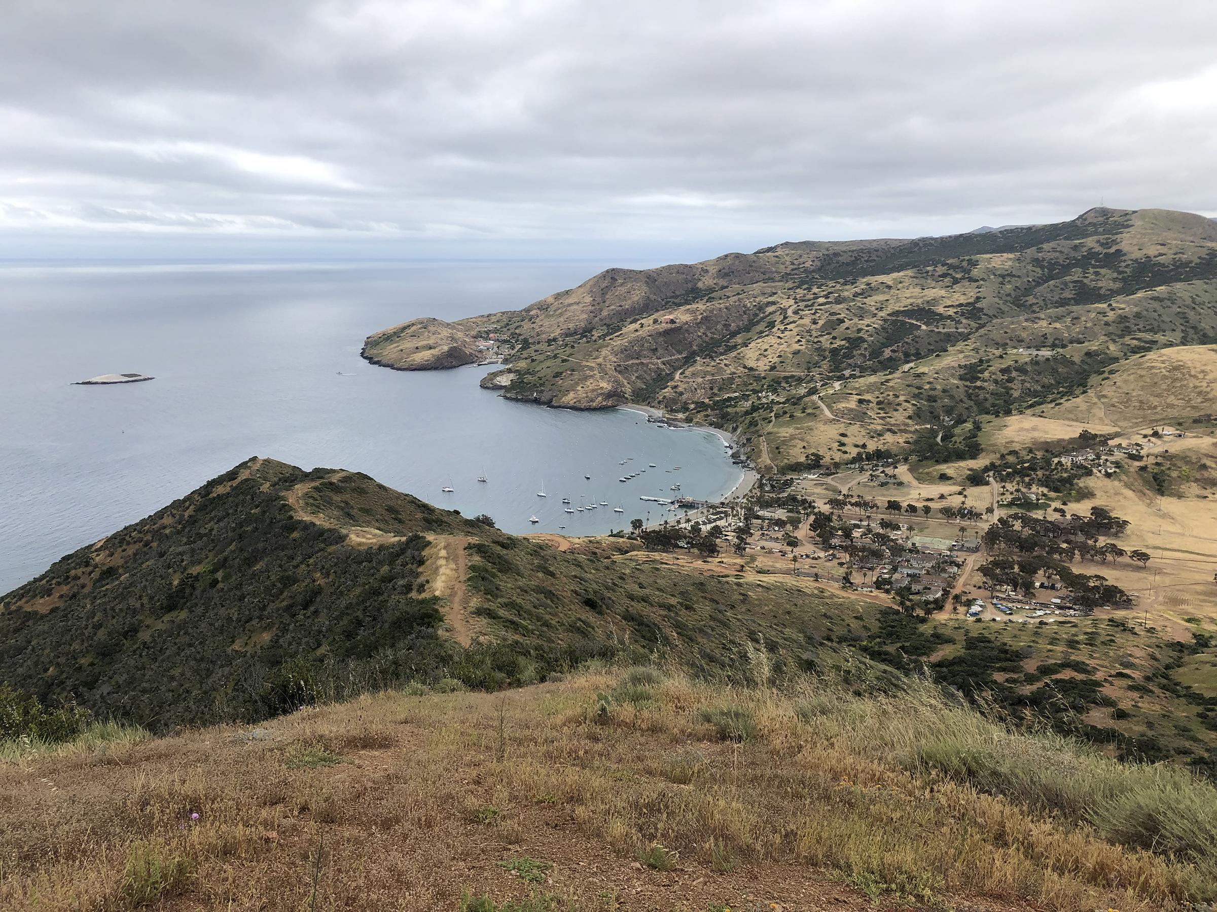 Trans-Catalina Trail-0842.jpg
