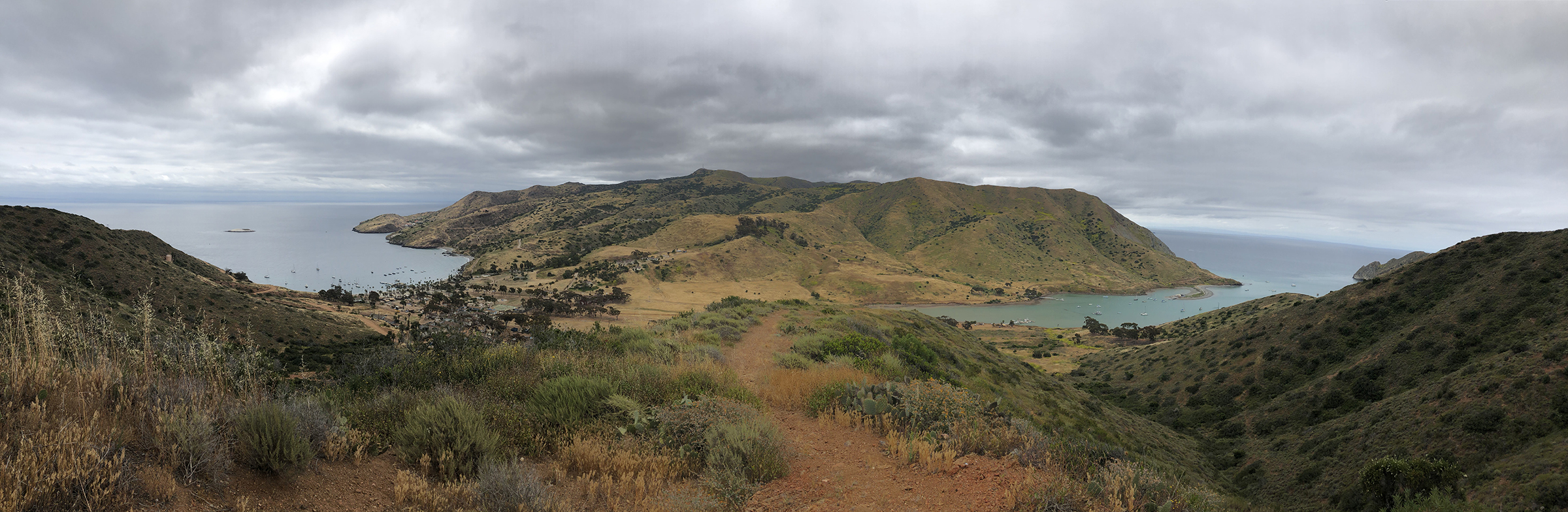 Trans-Catalina Trail-0837.jpg