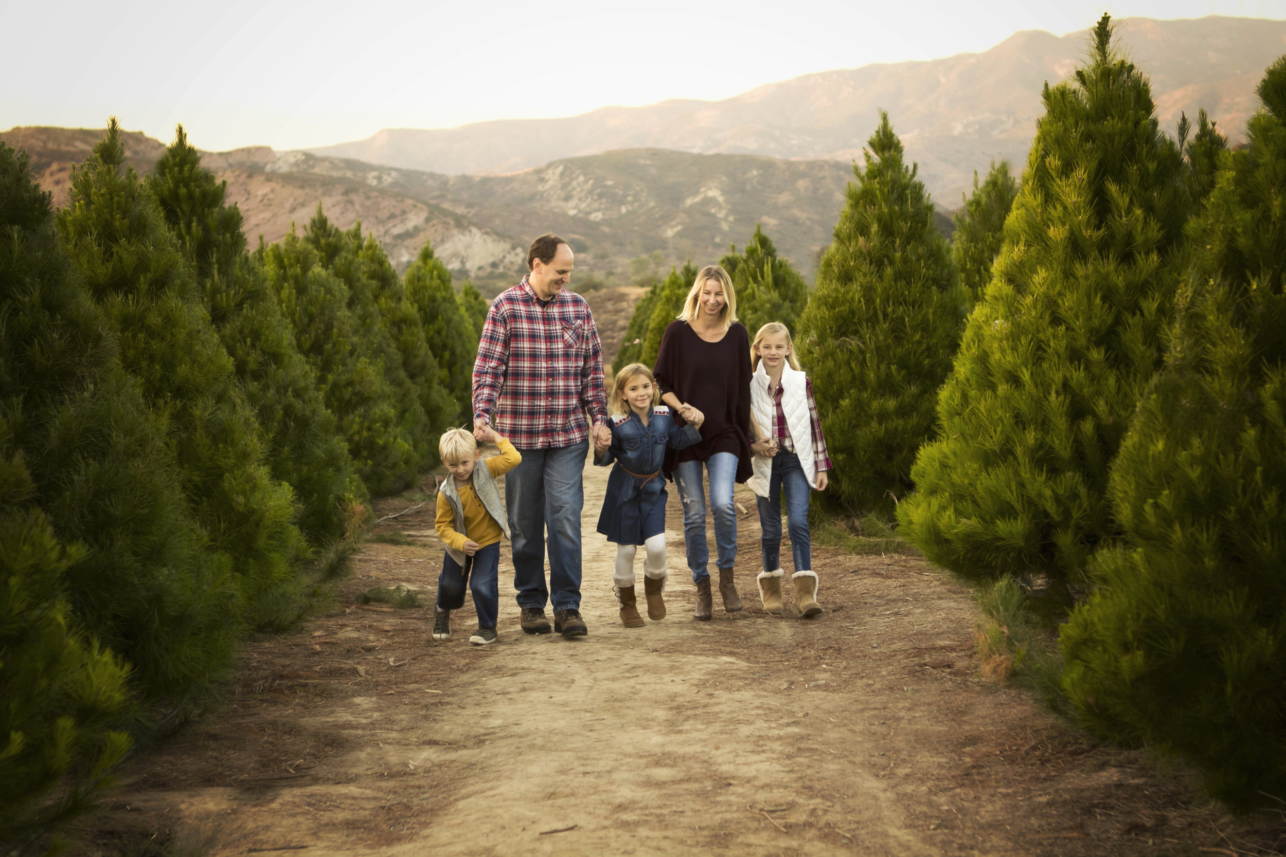 Orange County Christmas Tree Session | Stacey Still Photographer