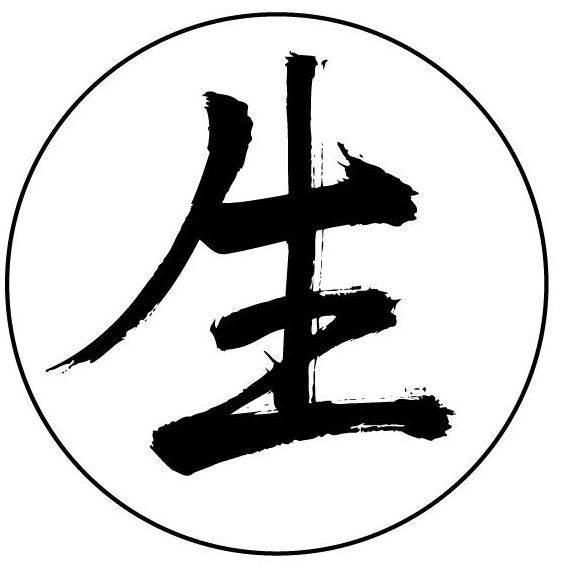 """shen shen health & harmony   The following is placeholder text known as """"lorem ipsum,"""" which is scrambled Latin used by designers to mimic real copy. Mauris id fermentum nulla. Maecenas non leo laoreet, condimentum lorem nec, vulputate massa. Mauris id fermentum nulla. Aenean eu justo sed elit dignissim aliquam. Aenean eu justo sed elit dignissim aliquam."""