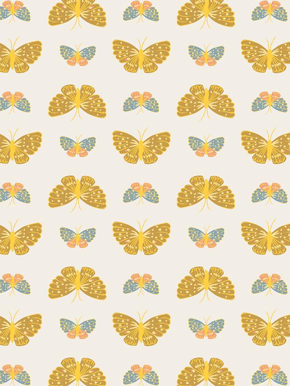 Butterfly01-01.jpg