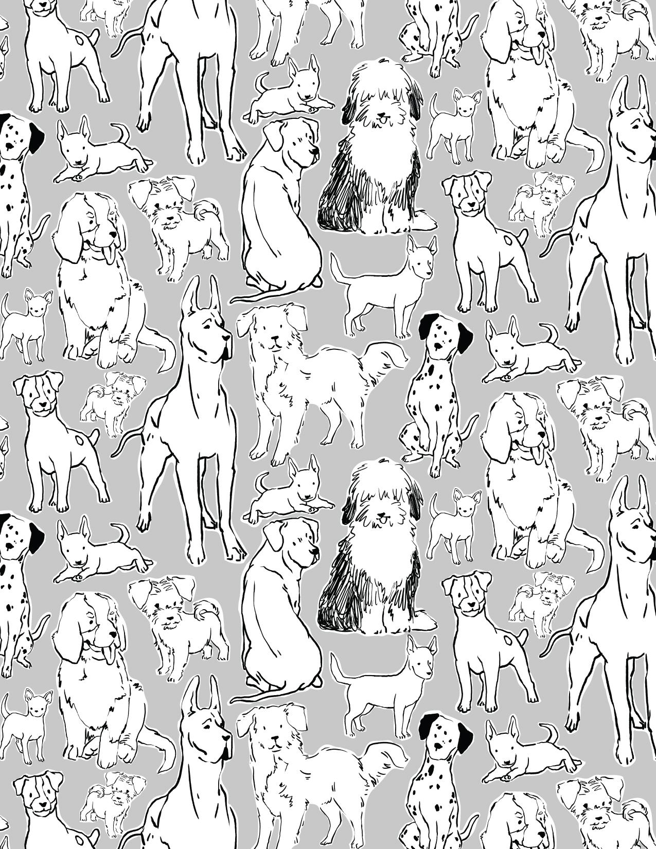 animal prints-04.jpg