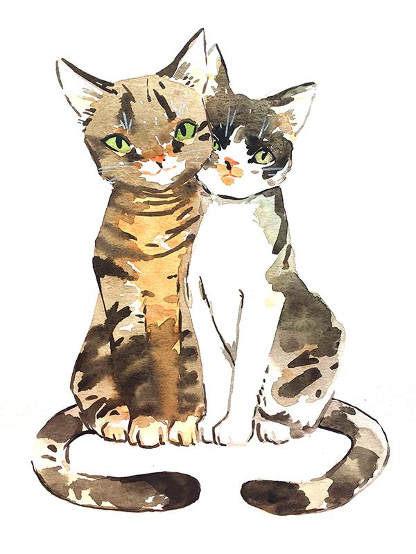 Cat+Sisters+LR.jpg