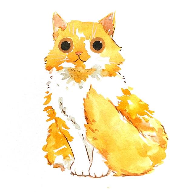 Taro+Cat+LR.jpg
