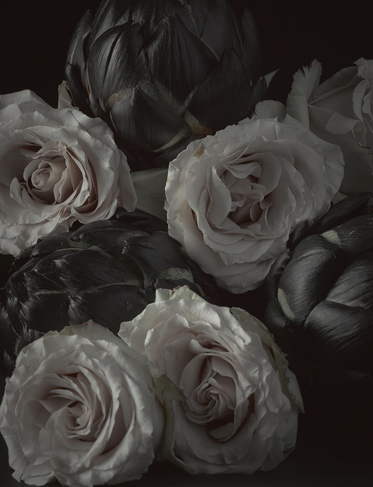 Roses-artichoke---16x20-with-border-.jpg