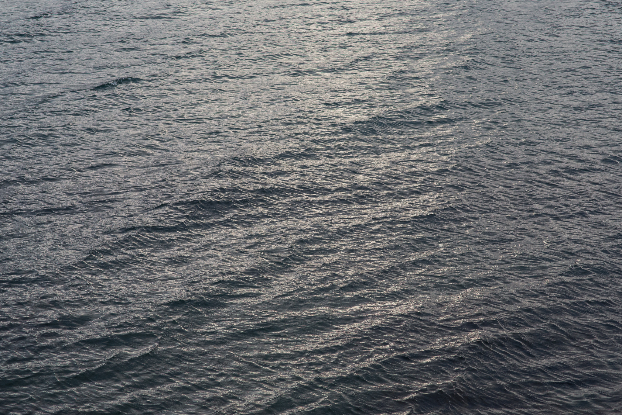 Sea is Sexy.jpg
