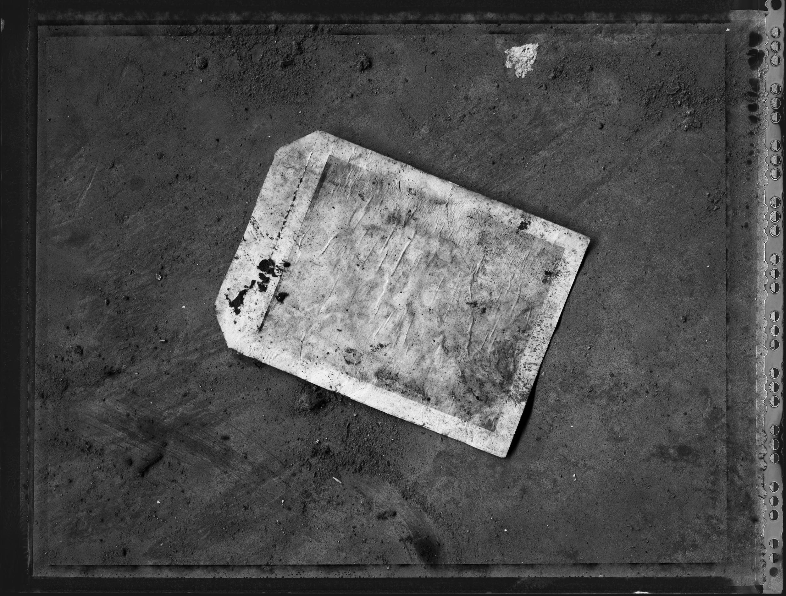 sb-walker-polaroid-5.jpg
