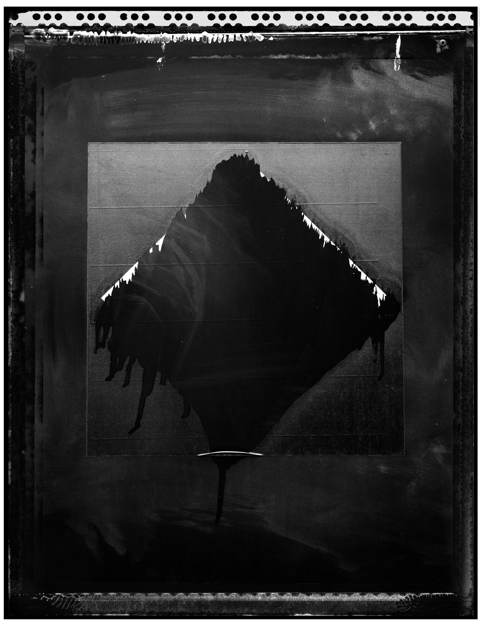 sb-walker-polaroid-1.jpg