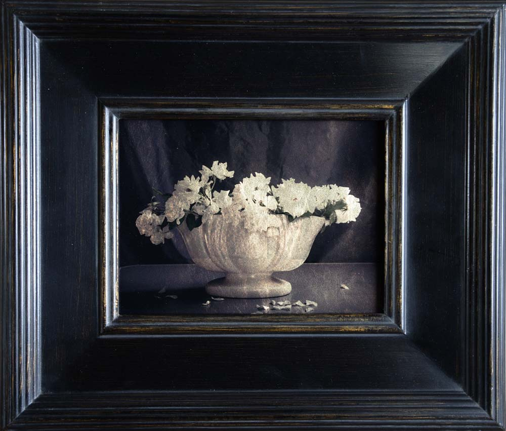 White Vase with Roses
