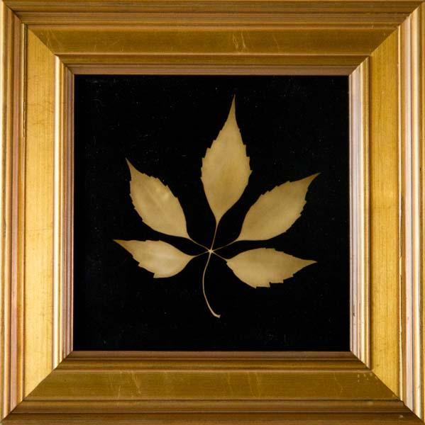 Botanical 5 Pointed Leaf