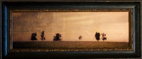 Six Trees, Nebraska