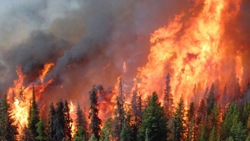 Fire-Image3-1-846x476.jpg