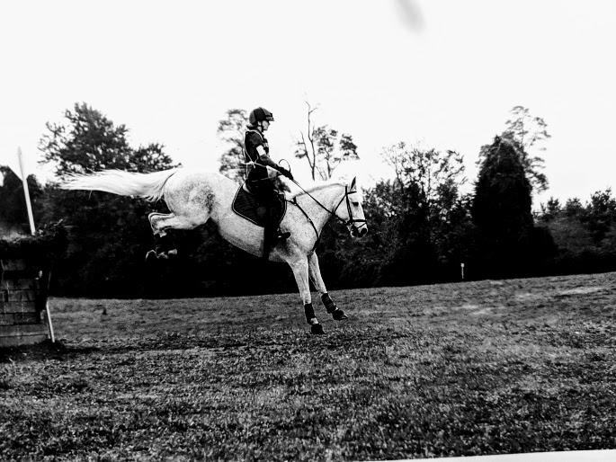jumping ellie.jpg
