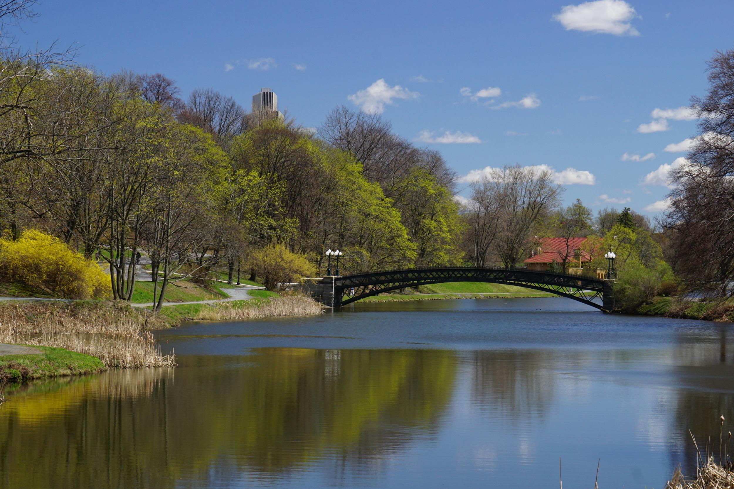 Albany Washington Park Bridge in Spring