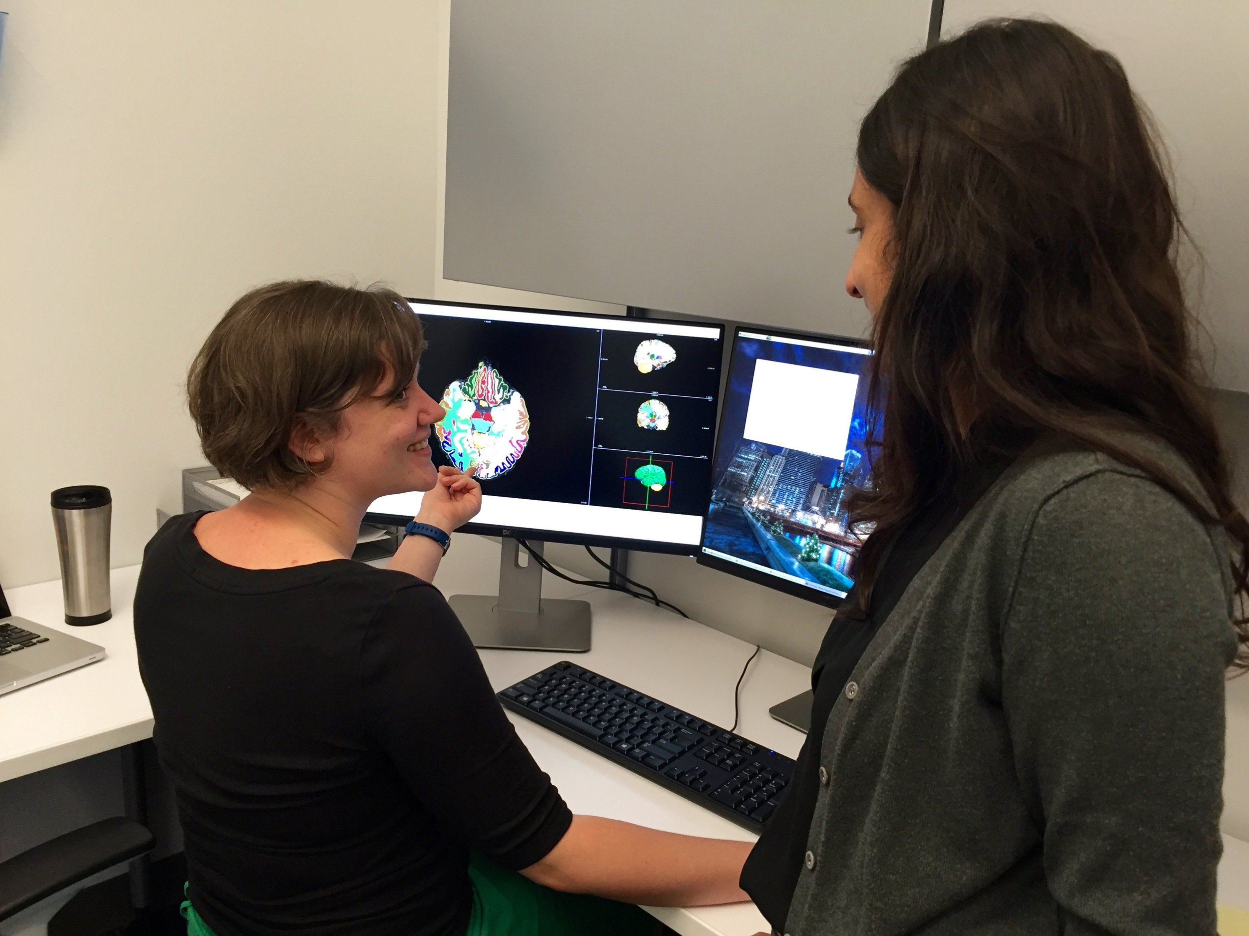Figure 17a.  Lab members Tina Gupta and Katherine Damme perform pre-processing and quality checks utilizing the labs graphics workstation.